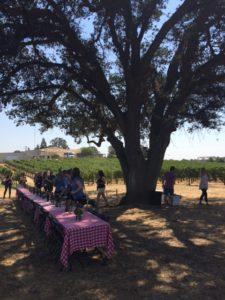 Bokisch picnic
